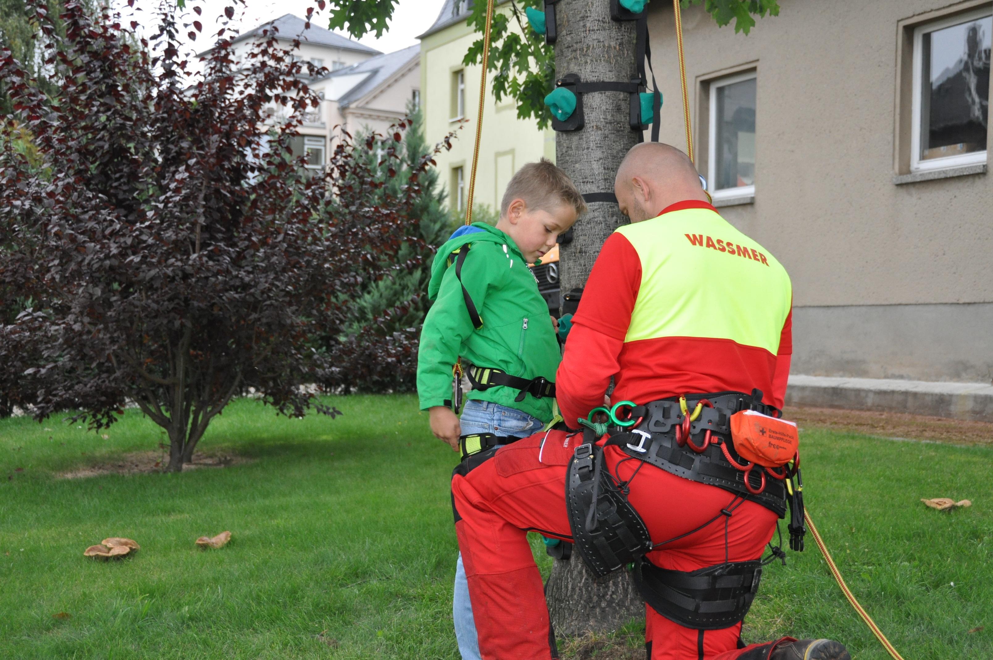 Treeup Klettergurt Test : Klettergurt forst steigeisen baumsteigeisen baumklettern